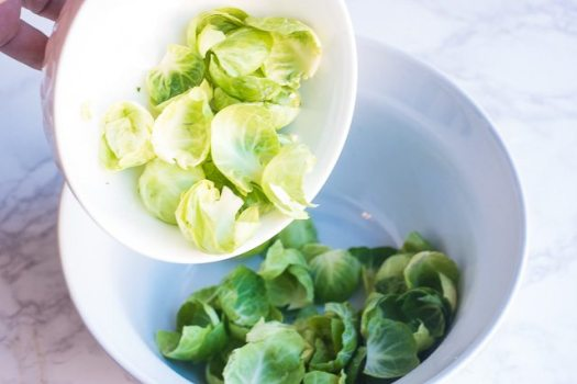 Brussels-Sprouts-leaves